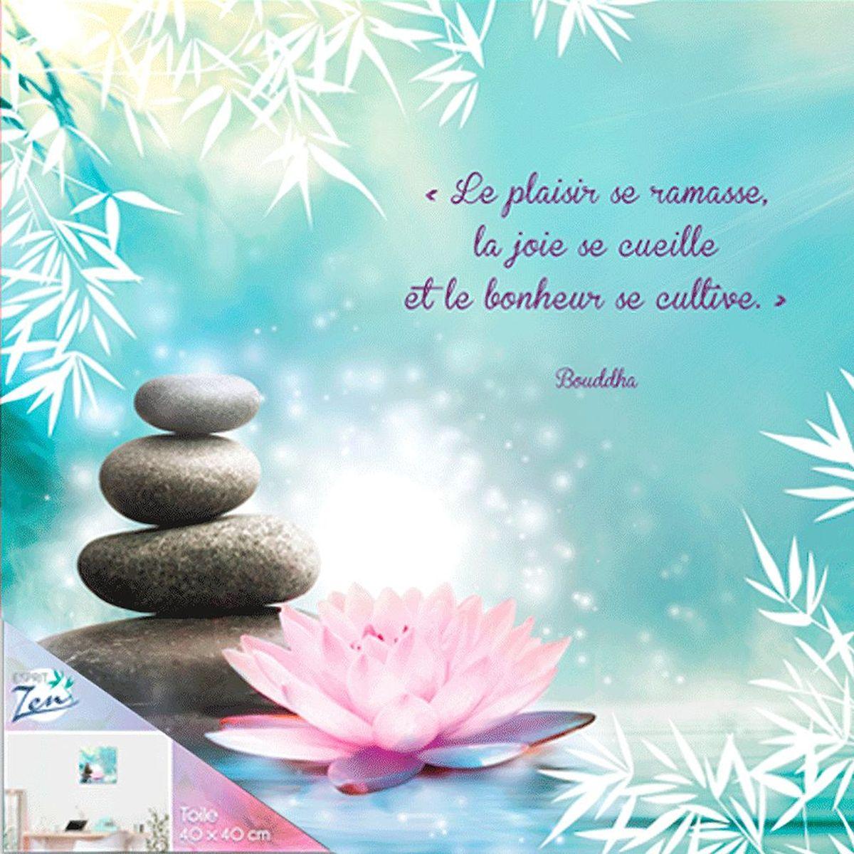 Cadre Citation Bouddha Zen 40 X 40 Cm Le Plaisir