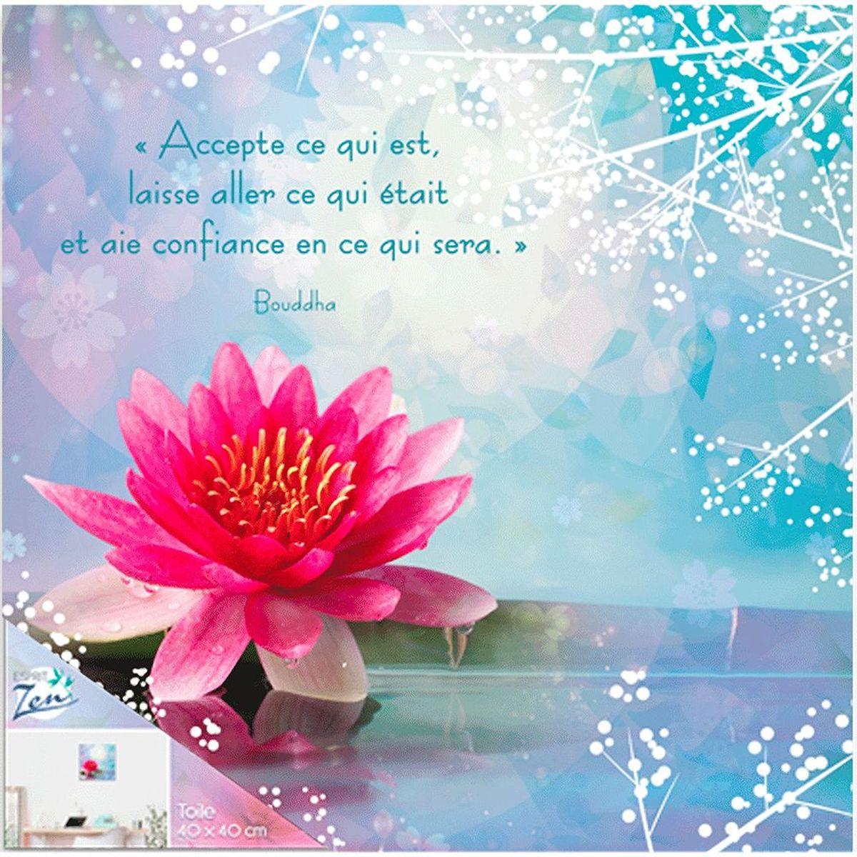 Cadre Citation Bouddha Zen 40 X 40 Cm Accepte