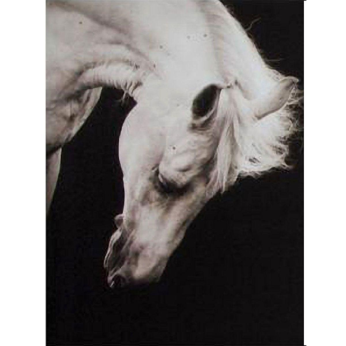 cadre en toile imprim 233 e cheval noir et blanc 50 x 40 cm