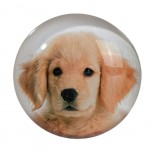 Magnet chiot Golden Retriever en verre 3.5 cm