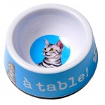 Gamelle Chat bleue Turquoise -  A Table